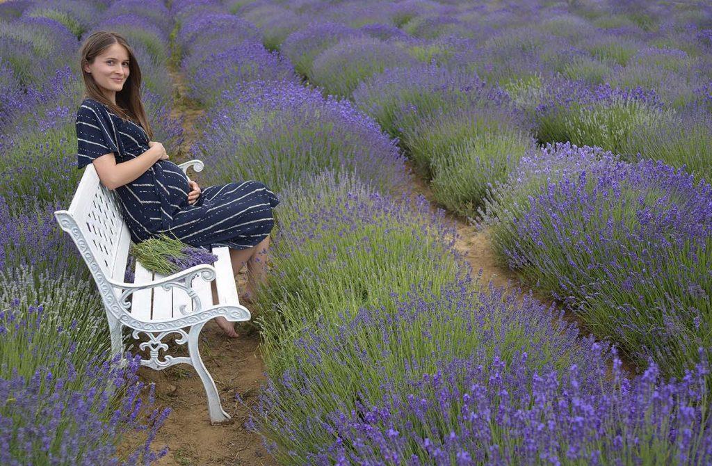 Cánh đồng hoa lavender ở Hungary