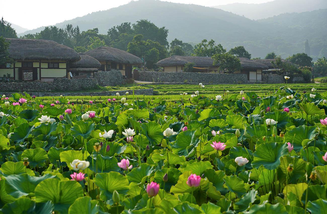 Làng quê Hàn Quốc